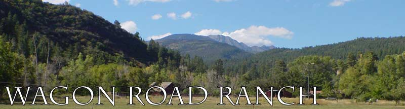 Durango Colorado Luxury Rental Property - Wagon Road Ranch